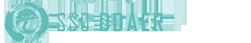 ddaer-logo-web